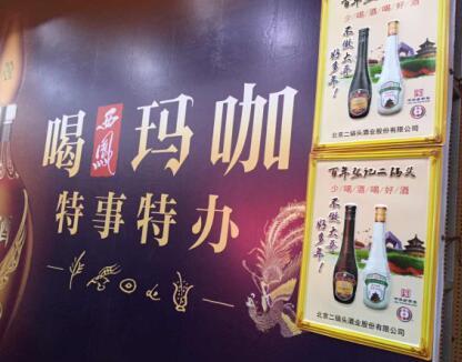 西凤健康白酒巨作――西凤玛咖酒重磅来袭火爆好酒大讲堂